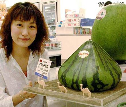 melancia piramidal japonesa Frutas e legumes em formatos inusitados