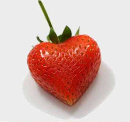 morango Morangos em forma de coração, ouw que fofo!