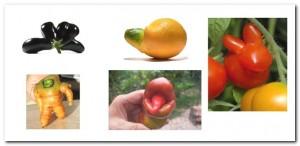 legumes bizarros
