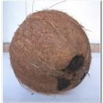 Dica como ralar coco (2)