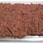 Cocada com leite condensado e chocolate (6)