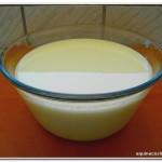 iogurte desnatado caseiro (4)