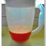 Molho de tomates com polpa e semente (6)