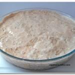 arroz de forno (5)