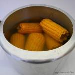 Milho cverde cozido na panela de pressão (5)